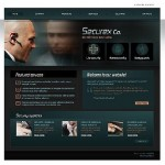 Professional Website Template, Flash and Java driven, over 5,000 to choose from